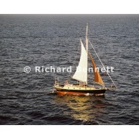 YachtRaces/YR2007/CRUISING YACHTS and POLICE/CRUISING YATCH 019SH07