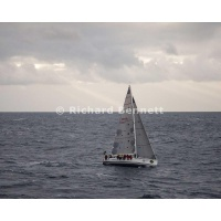 YachtRaces/YR2012/Sydney to Hobart/Brannew 2177 SH12