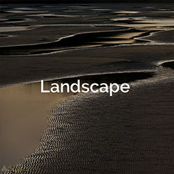 category-landscape-tmb
